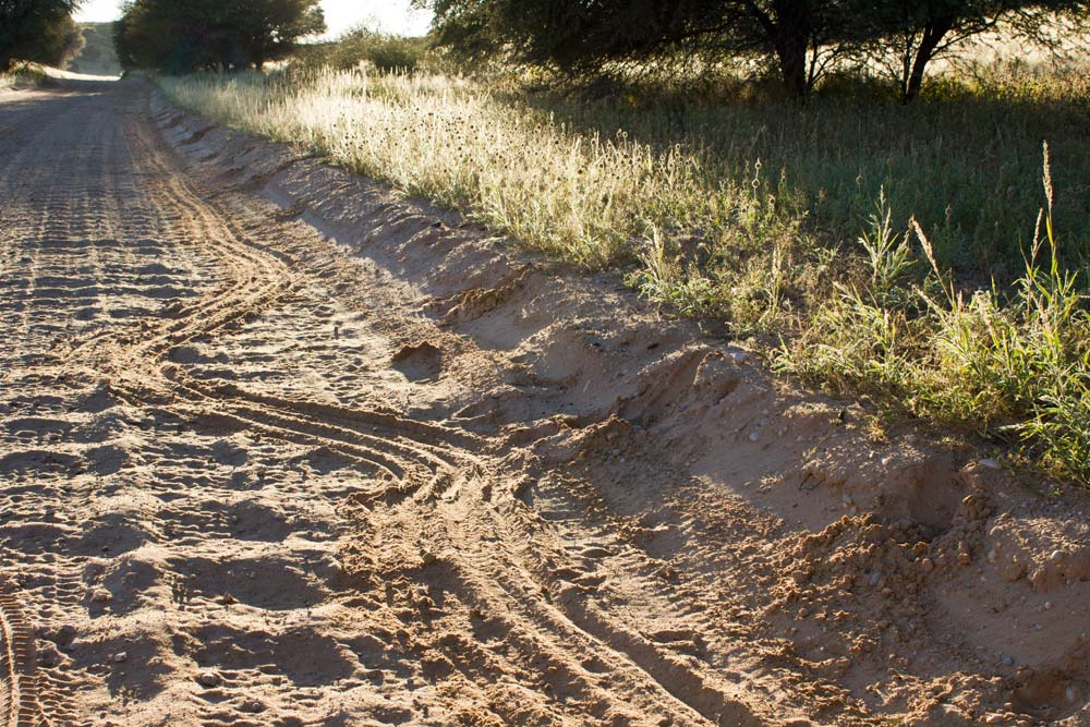 Dragging marks on a road in the Kalahari
