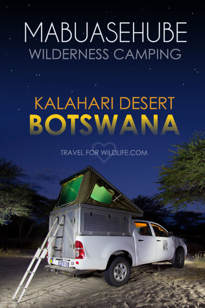 The ultimate guide to wilderness camping in the Mabuasehube area of the Kgalagadi Transfrontier Park in Botswana.
