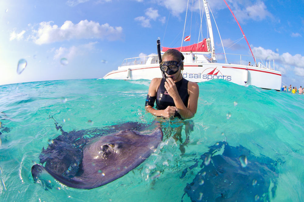 Swimming with stingrays, Grand Cayman Stingray City tours