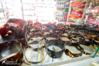 real tortoise shell bracelets made from hawksbill turtle shell, Nicaragua