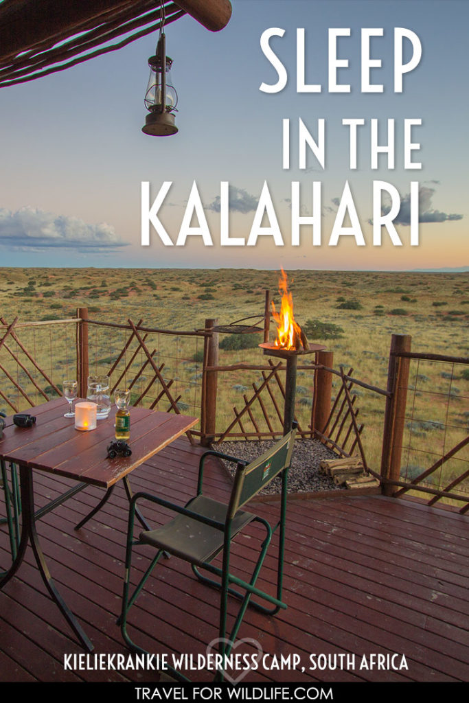 Visit the Kalahari in South Africa and enjoy a wilderness experience when you stay at Kieliekrankie. This wilderness camp is a wilderness enthusiast heaven. Kalahari desert animals, solitude, big night skies, and a view to die for!