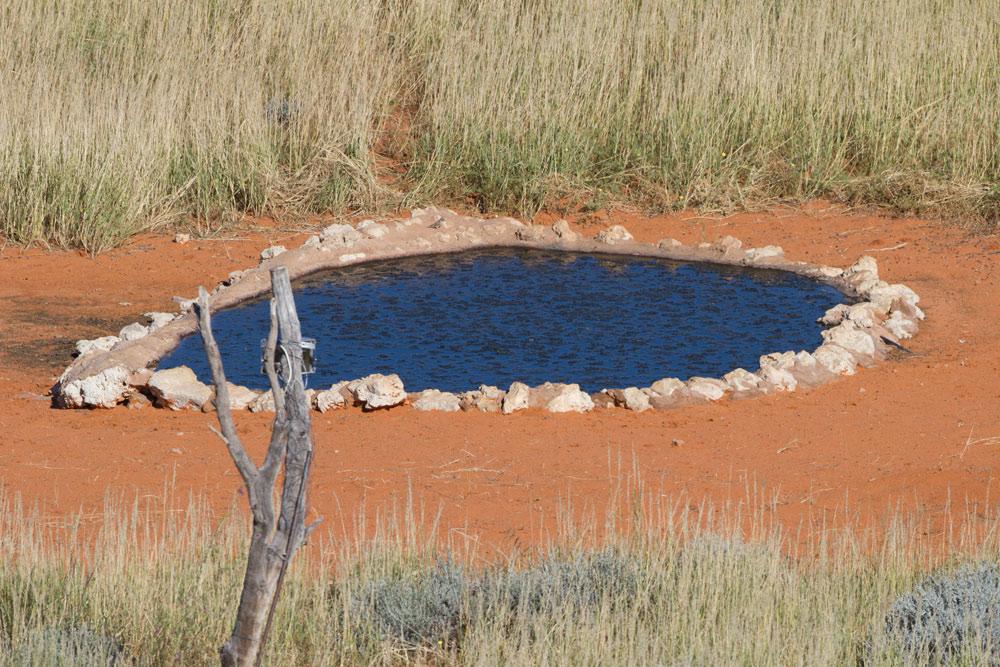 Kieliekrankie waterhole