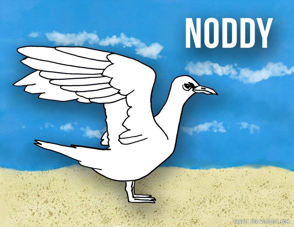 Animals that start with n - Noddy illustration