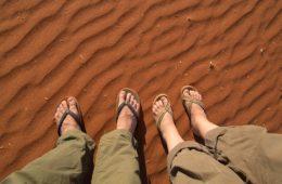 best safari shoes recommendations