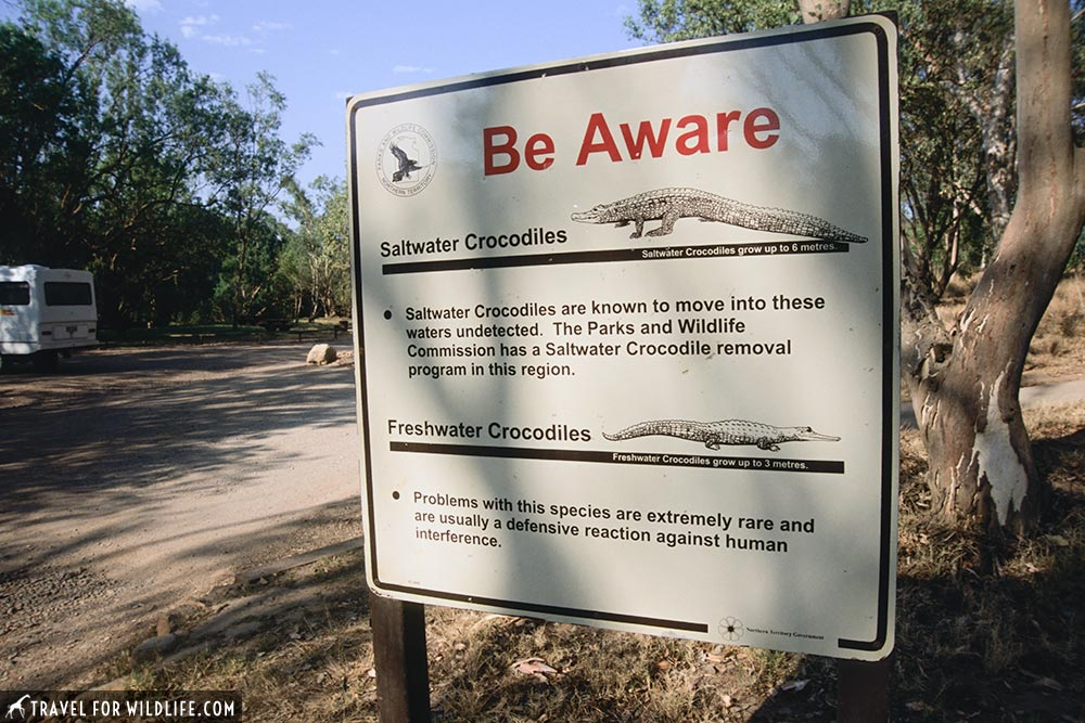 Crocodile warning sign, Australia