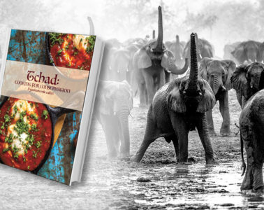 Tchad: cookinf for conservation book