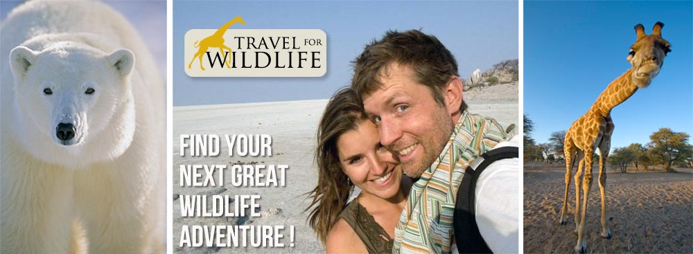 Travel For Wildlife travel blog, with Cristina and Hal
