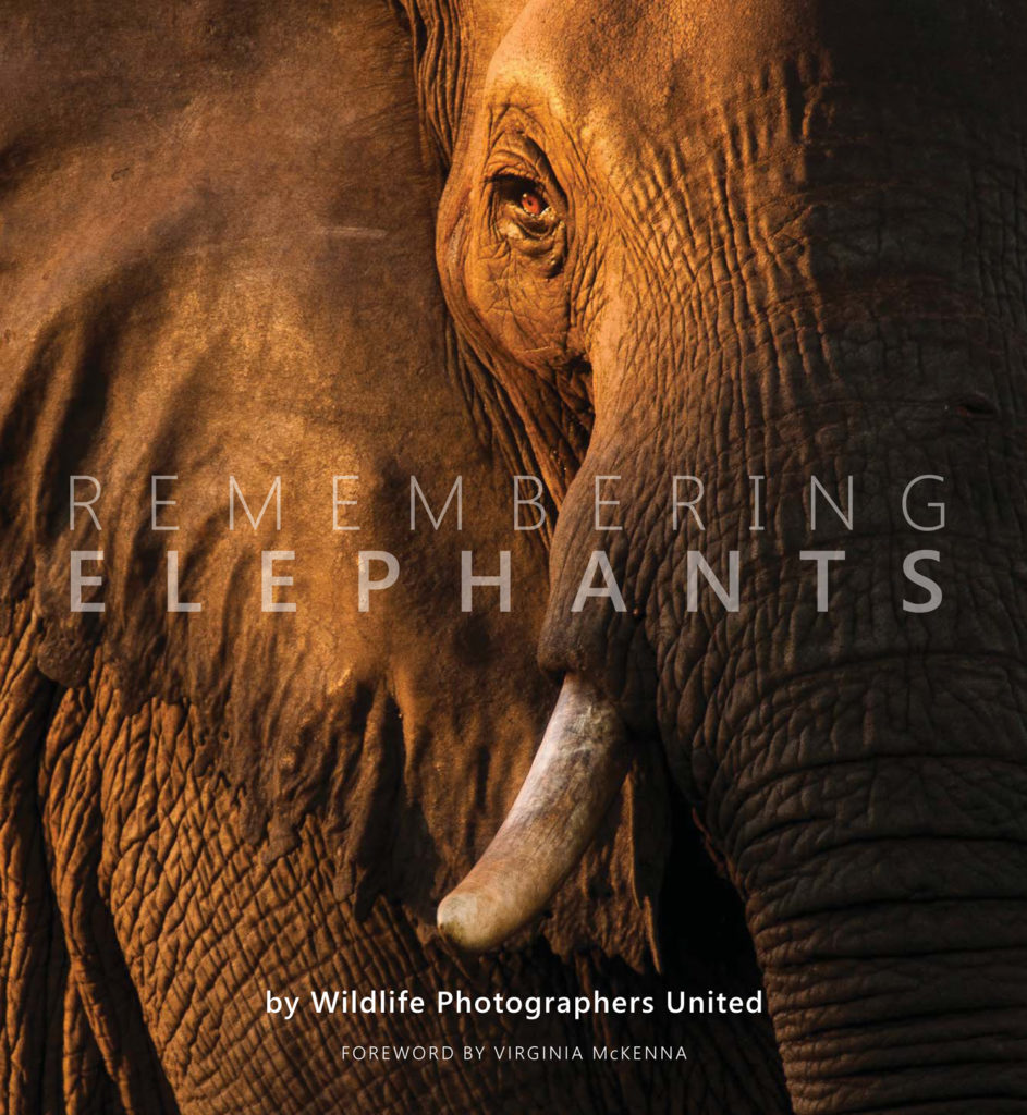 Remembering elephants book cover