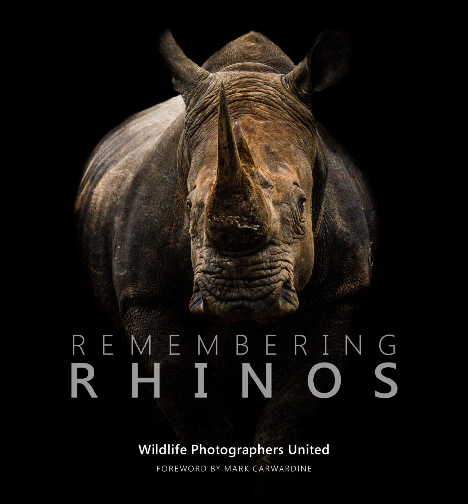 Remembering rhinos book cover