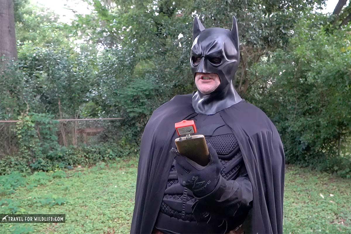 batman with bat detector