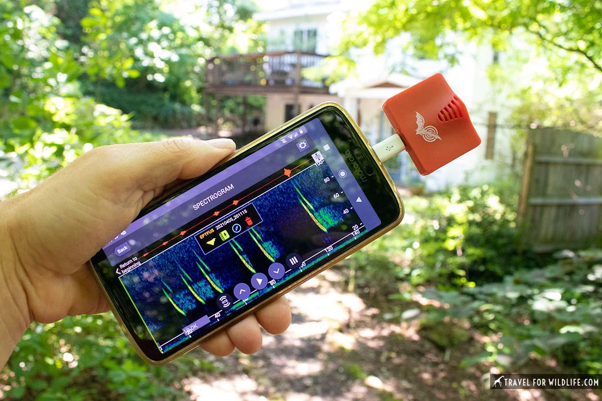 echo meter touch 2 bat detector
